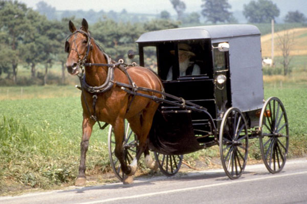 viaggi-new-york-all-inclusive-offerte-amish