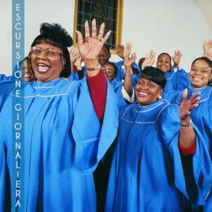 Escursione Giornaliera Gospel Tour - Lingua: Inglese
