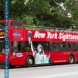 Escursione Giornaliera Gray Line Citysightseeing New York Multilingual City Tour